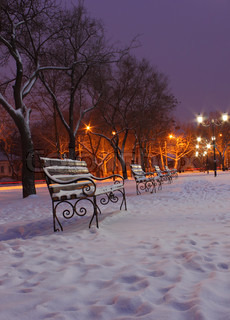 row of benches in park at winter night