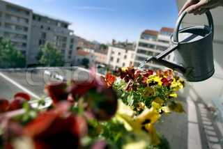 Billede af 'balkon, planter, vandingsanlæg'