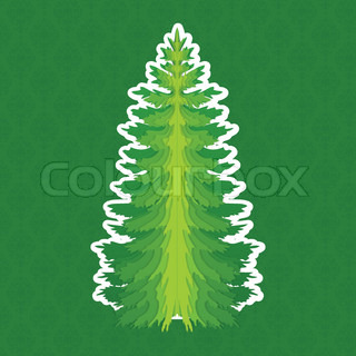 Pine - tree_stock_cs5