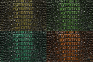 Set of Crocodile bone skin texture background