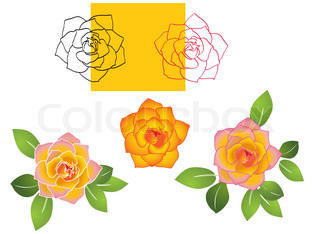set of roses -illustration