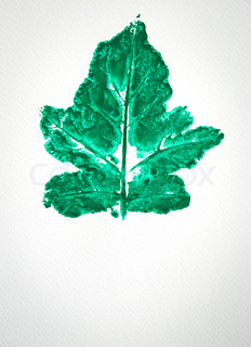 Watercolor of green leaf