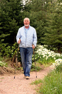 senior man fitness training with walking sticks on footpath in forest