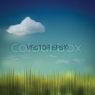 Field Grass and Cloud Blue Sky Vector Background
