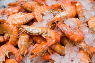 Shrimp in ice