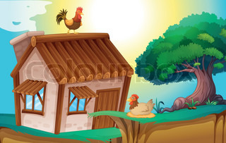 hens and house