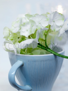 Dekoration med blomster over en blå kop