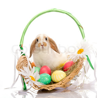 festive Easter Bunny sitting in basket with on white background