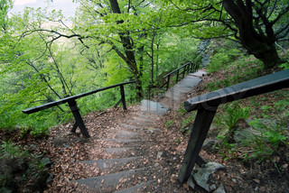 Stairs on the tourist trail