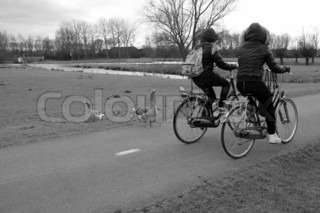 The girlfriends cycling home and  on the way they looking at the greylag geese in fall in black and white.