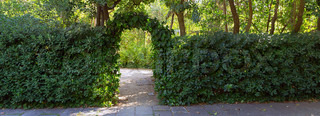 green arched shrubs gardens in Barcelona, Spain, Catalonia