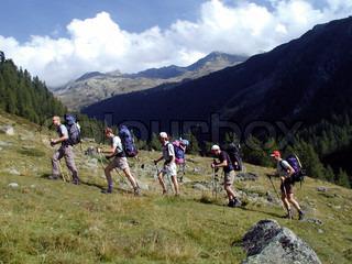 Billede af 'vandre, bjerg, nordic walking stav'