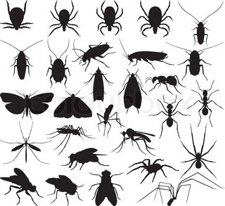 Silhouette household pests