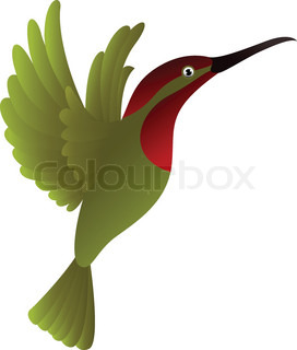 hummingbird cartoon
