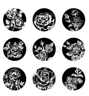Set of floral banners Hand drawn rose illustrations