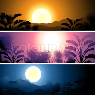 Tropical banners set landscape, sun, moon and palm trees