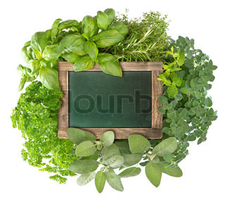 blank green blackboard with variety fresh herbs