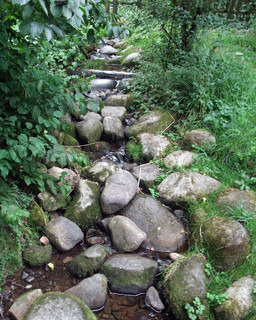 stream and pebbles