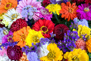 colorful bunch of flowers