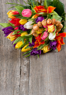 fresh colorful tulips over wooden background