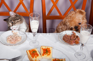 Banquet for the animals