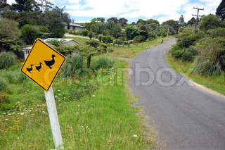 Yellow duck road sign rural area