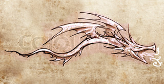 Sketch of tattoo art, stylish decorative dragon