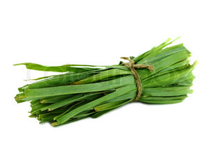 Fresh healthy bio leek