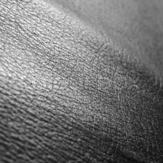 Black leather as a background | Stock Photo | Colourbox Dolphin Skin Texture