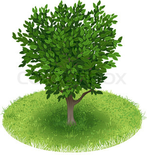 Tree in green field