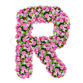 Z Alphabet In Rose flower alphabet isolated on white with clipping path