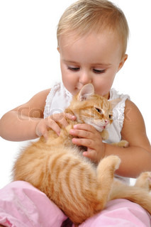 baby child playing with a kitten