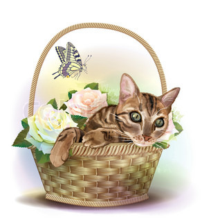 Illustration ofthe tabby cat sitting in a basket with roses