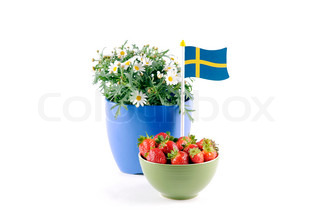 Strawberries, daisies and a Swedish flag against a white background