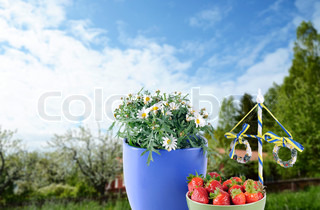 Maypole, daisies and a bowl of strawberries against a background of greenery and blue sky