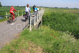 The striking girl in red and her girlfriends are biking over the bridge and going to school in the summer.