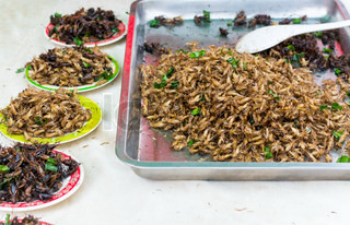 Fried insects are regionalThailand