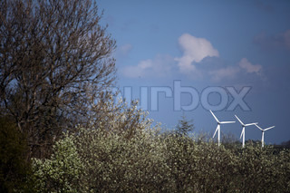Landscape with three windmills, tree and bushes Denmark