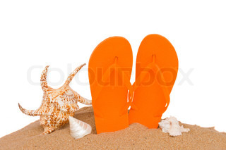 pair of orange sandals seashellsin sand isolated on white background