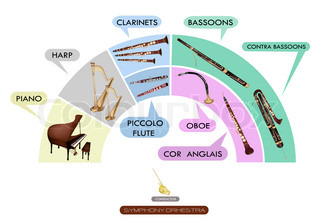 Set of Musical Instrument for Symphonic Band