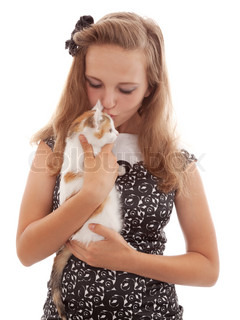 Portrait of the young beautiful girl with a kitten