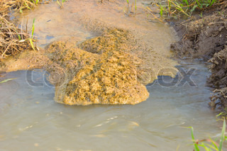 Bubbles of Wastewater