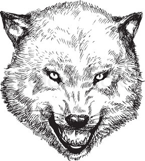 Hand Drawn Wolf Head Vector 7182199 in addition 2009 03 01 archive together with Coloring Halloween02 also Coloring Halloween02 likewise Snakes. on scary dangerous dogs