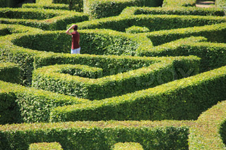 The game, labyrinth, the boy is thinking....which way?