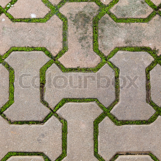 Brick Walkway Lined With Moss Up Nicelytexturebackground