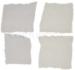 collection of grey ripped pieces of paper