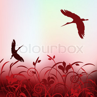 beautiful cranes flying in the spring sky