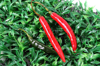 Peppers on the green grass