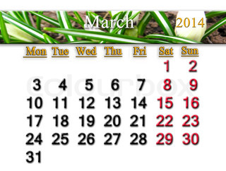 calendar for the March of 2014 year