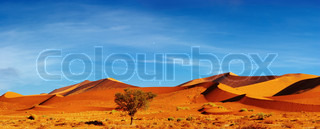 Dunes of Namib Desert at sunset, Sossusvlei, Namibia